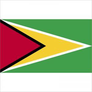 zastava gvajane zastaveshop