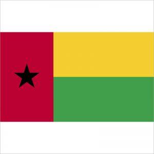 zastava gvineje bisao zastaveshop