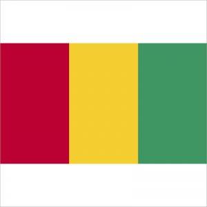 zastava gvineje zastaveshop