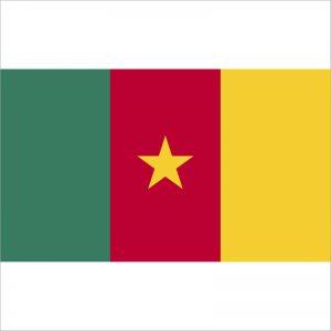 zastava kameruna zastaveshop
