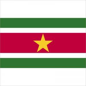 zastava surinama zastaveshop